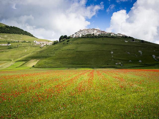 plains of Castelluccio