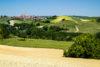 Home in Piedmont