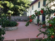 House for sale in FIRENZE (FI)