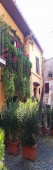 House for sale in SUTRI (VT)