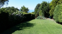 Apartment for sale in ANCONA (AN)