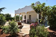 2 bedroom villa, 80 m²