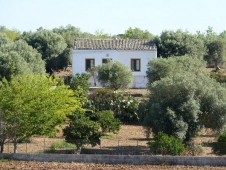House for sale in NOTO (SR)