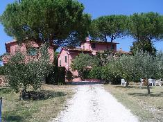 Farmhouse for sale in FAUGLIA (PI)